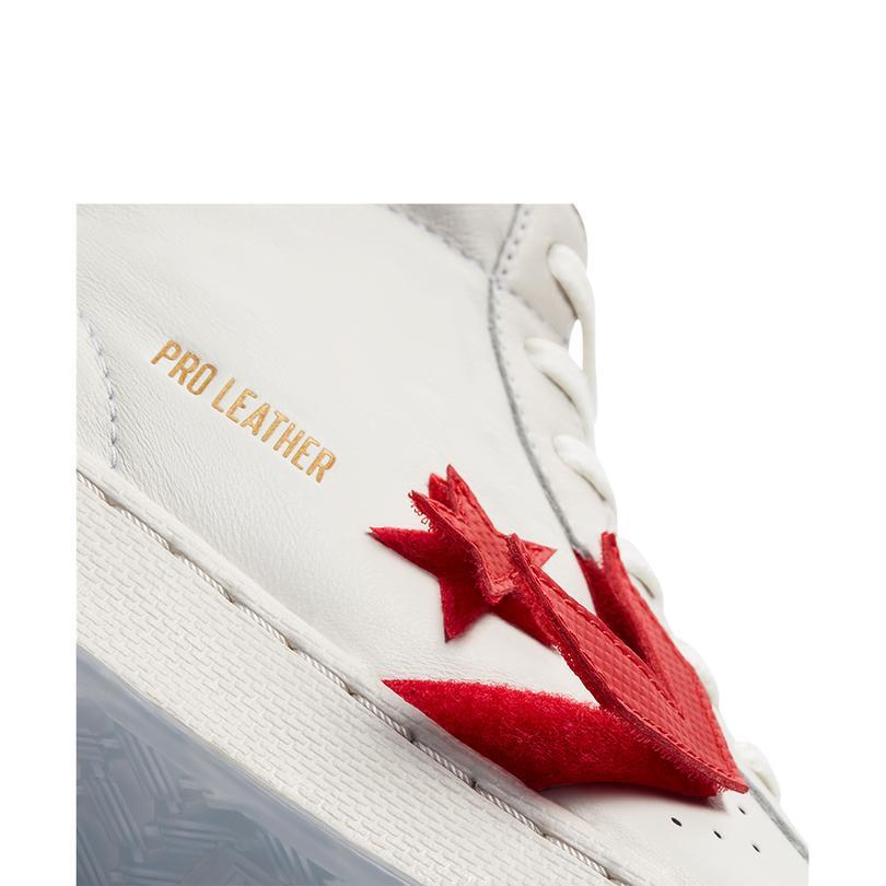 The Birth of Flight Pro Leather